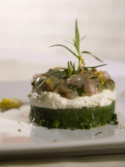 Gurkengelee mit Ziegenfrischkäse und Austern-Bachsaibling-Tartar