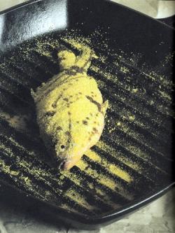 Süsswasserfische in Maisgriess